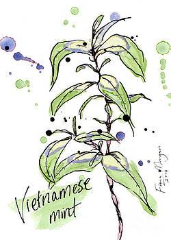 Culinary Herbs - Vietnamese Mint by Fiona Morgan