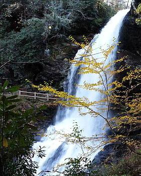 Cullasaja's Dry Falls by Brenda Stevens Fanning