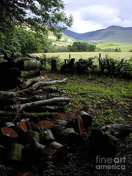 Malcolm Suttle - Cumbrian Logs and Hills