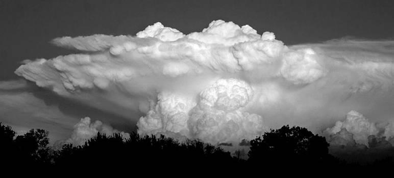 Cumulonimbus capillatus by Andre Guerin