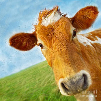 Curious Cow by Jo Collins