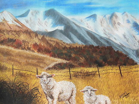Curious Sheep of New Zealand by Nicole Poston