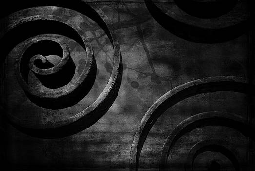 Curls by Sharon Kalstek-Coty