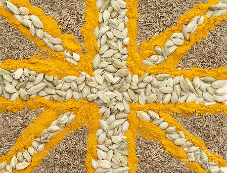 Anne Gilbert - Curried Flag
