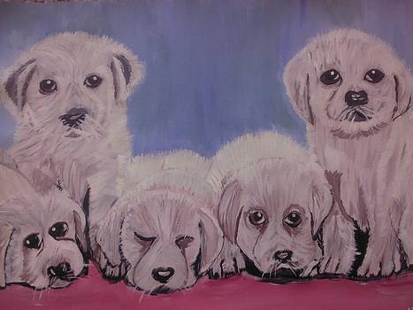 Cute Dogs by Neha  Shah