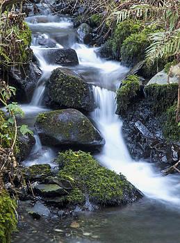 Cwm Gwaun Waterfall by Simon West