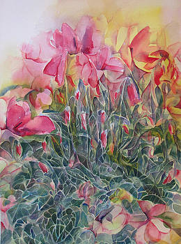 Cyclamen by Lynne Bolwell