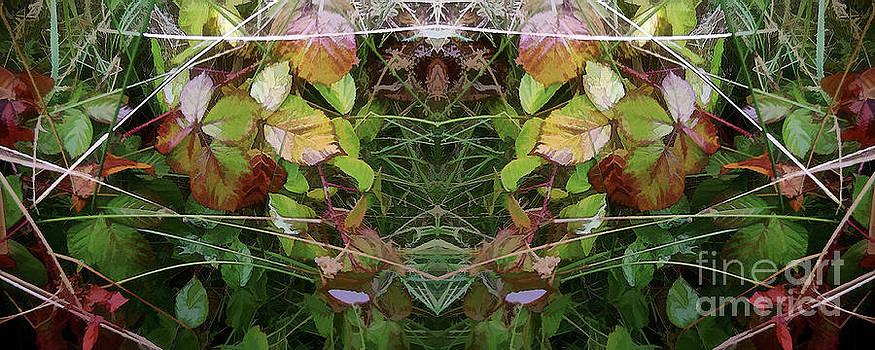 David Hargreaves - Cycle 4 - Autumn