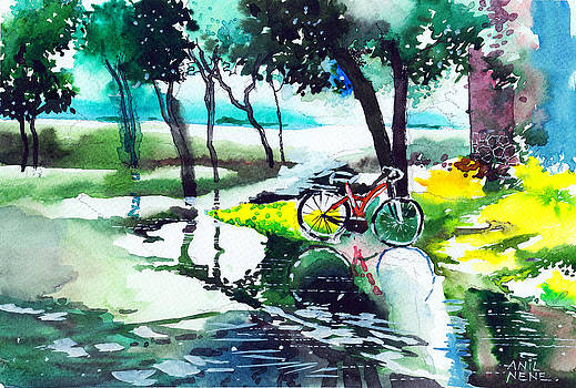 Cycle in the puddle by Anil Nene