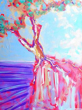 Cypress by Kurt Hausmann