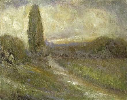 Cypress Landscape by Joe Leahy