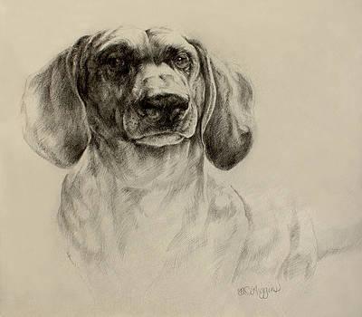 Derrick Higgins - dachshund sketch