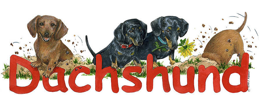 Dachshunds by Terry Albert