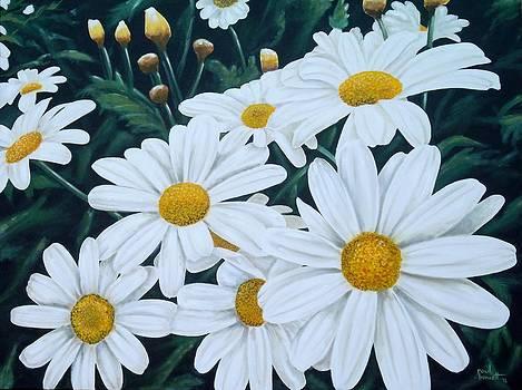 Daisies by Paul Bennett