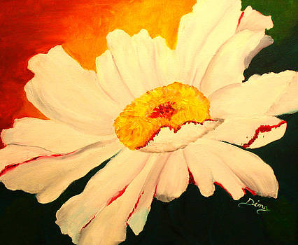 Daisy by Dina Jacobs