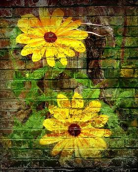 Daisy Graffiti Print by Lois Bailey