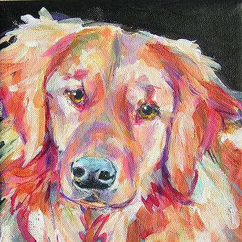 Daisy by Judy  Rogan
