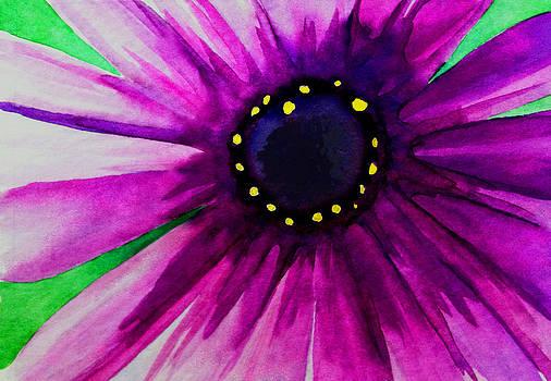 Daisy by Ria Sharon