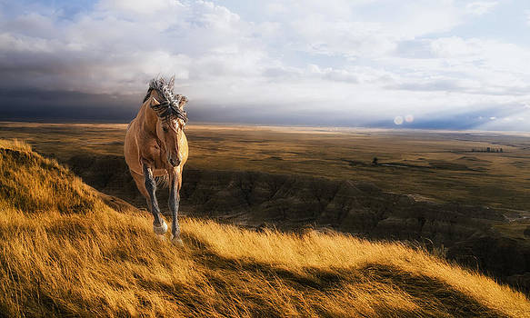 Dakota Dreams by Ron  McGinnis