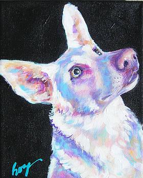 Dakota by Judy  Rogan