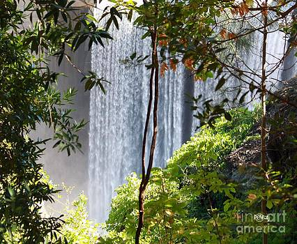 Patrick Witz - Dam Falls