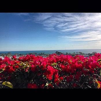 #danapoint #ocean #pacificocean by Mark Jackson