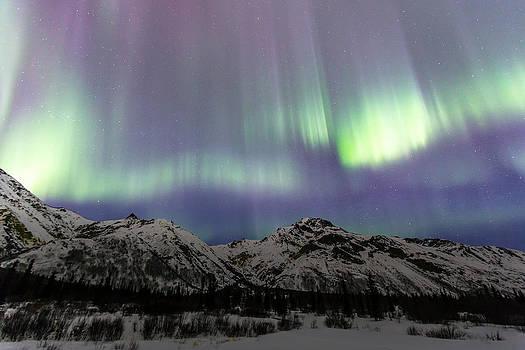 Dancing Aurora Borealis by Sam Amato