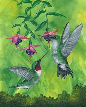 Dancing Hummingbirds by Christine StPierre