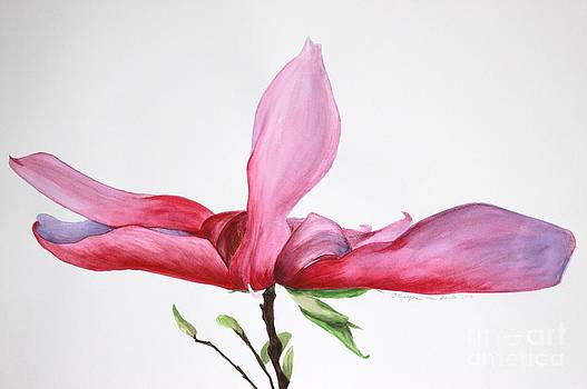 Dancing Magnolia series 2 by Kyong Burke