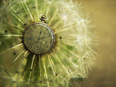 Dandelion Clock by Karen Casey-Smith