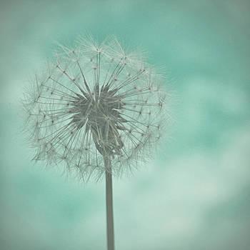 Georgia Fowler - Dandelion Dreams