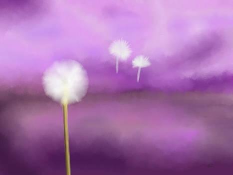 Dandelion by Jilly SB