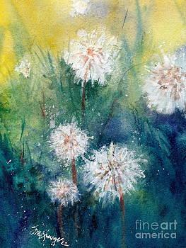 DandelionIV by Suzanne Krueger