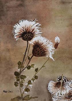 Dandelions by Marie Lewis