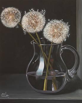 Dandelions by Paul Bennett