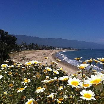 Dang I Miss This Place #santabarbara by Alejandra Lara