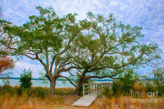 Dale Powell - Daniel Island SC