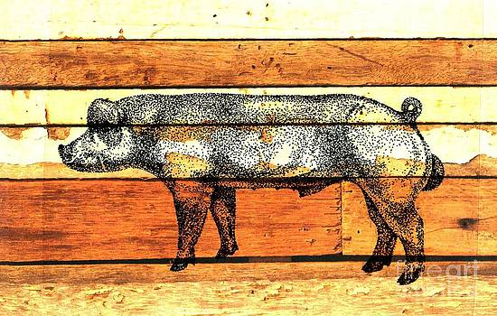 Danish Duroc 11 by Larry Campbell