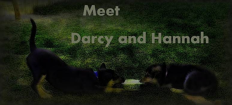 Darcy and Hannah 6 by Robert Rhoads