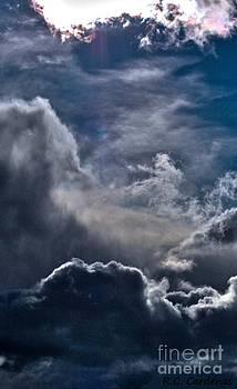Daring Sky by Rebecca Christine Cardenas