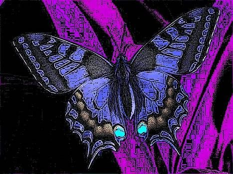 Dark Beauty by Kathy Budd