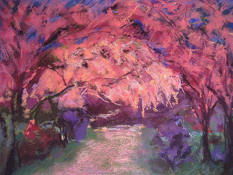 Dark Blossom by Jennifer Robin