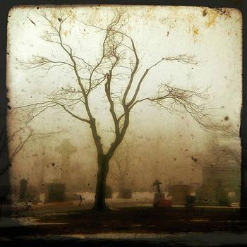 Gothicrow Images - Dark Graveyard Fog