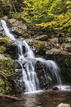 Thomas Schreiter - Dark Hollow Falls