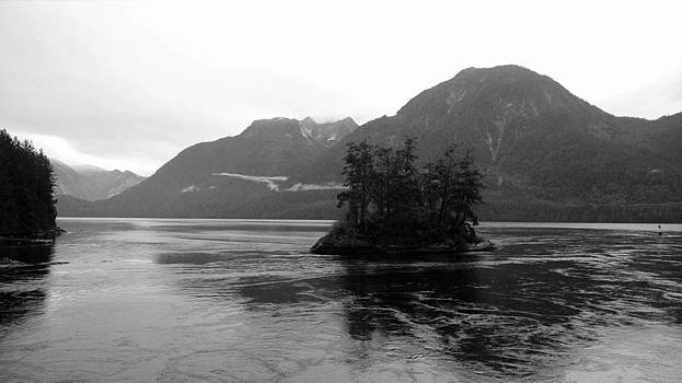 Dark Isle by Sara Gardner