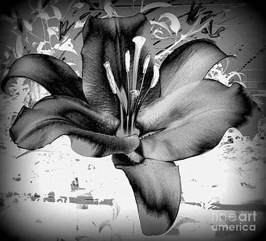 Dark Lilly by Susan Saver
