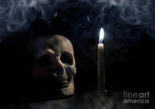 Dark by Martina Roth