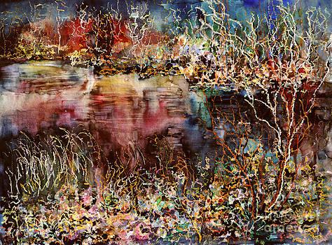 Dark Mirrors Lights by Alfred Motzer
