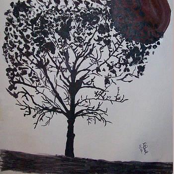 Dark Moon by De Beall