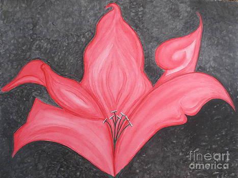 Dark Pink Lily by Sandra Spincola